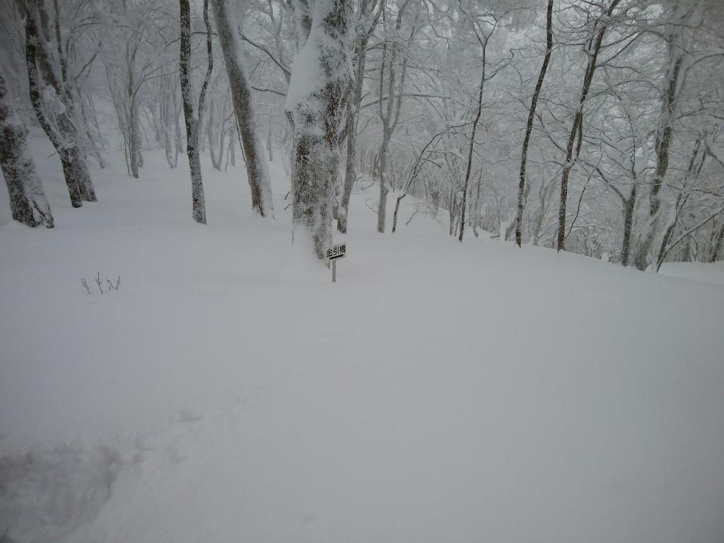 金引尾根分岐に到着。ここで雪が深いのでわかん装着