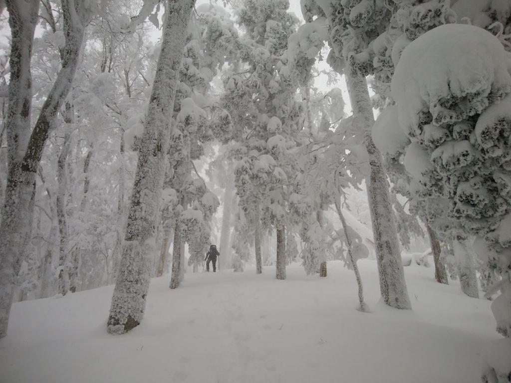 それにしてもすごい雪の量。さすが大峰。青空があればもっといいけどこれでもかなりの景色だった