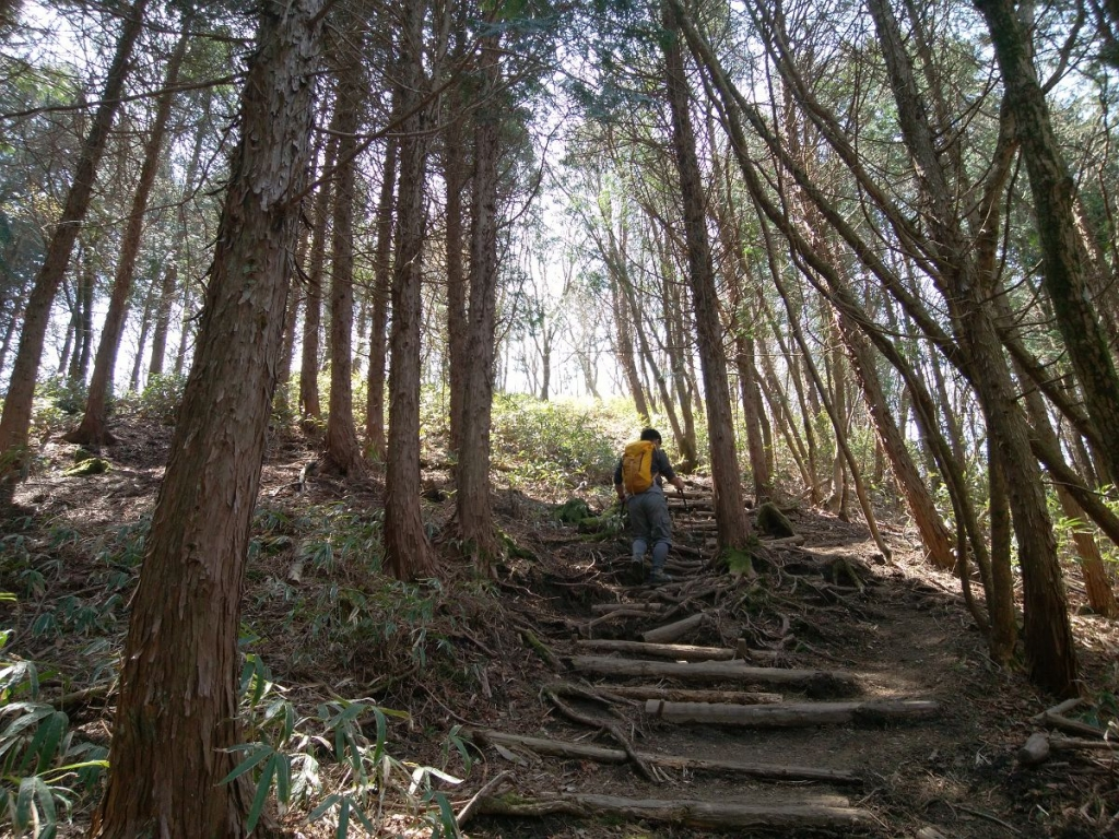 大日岳への登り