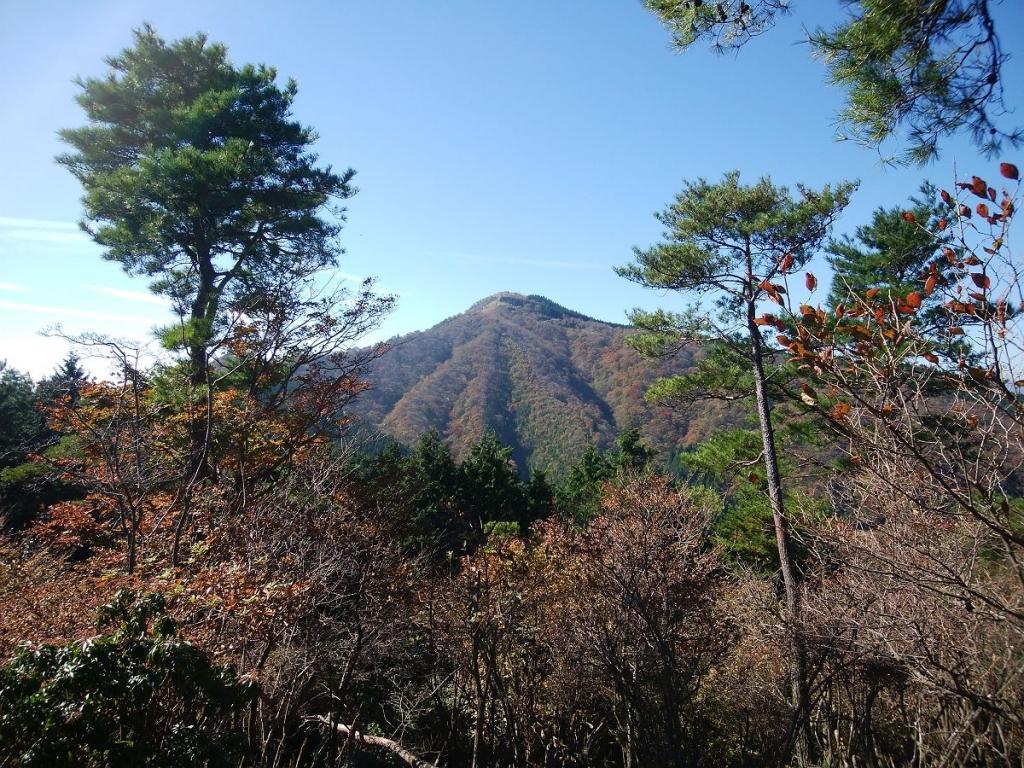 途中、これから向かう千ヶ峰のピークが見える場所があった。
