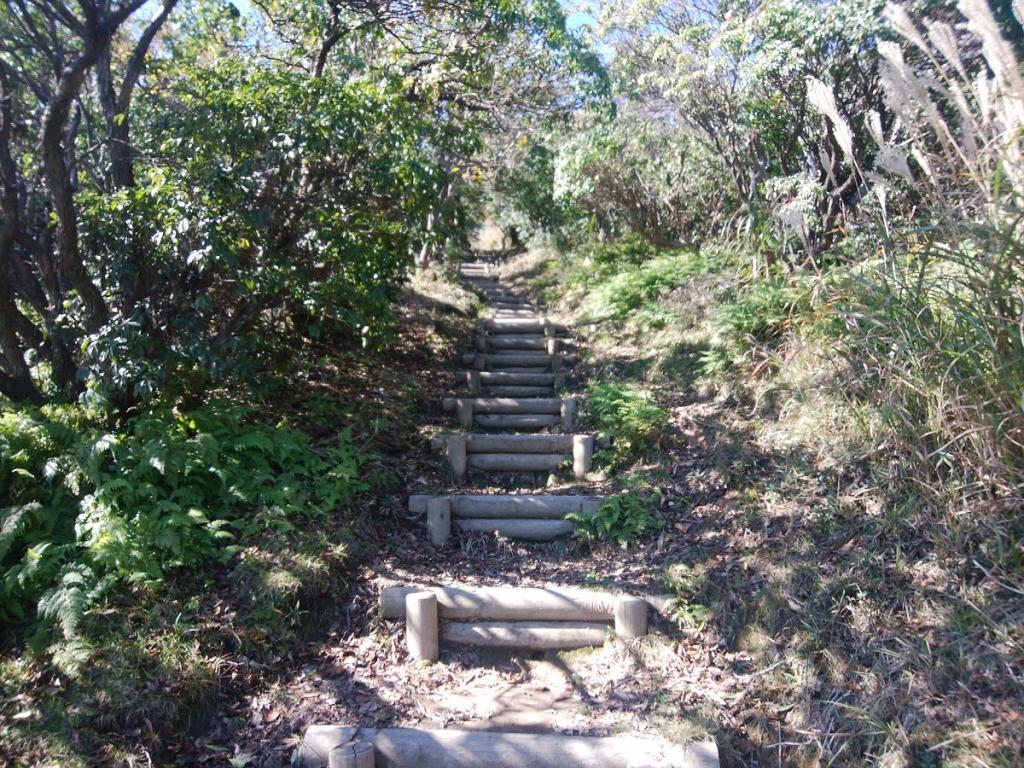 山頂直下はちょい息が切れるような階段