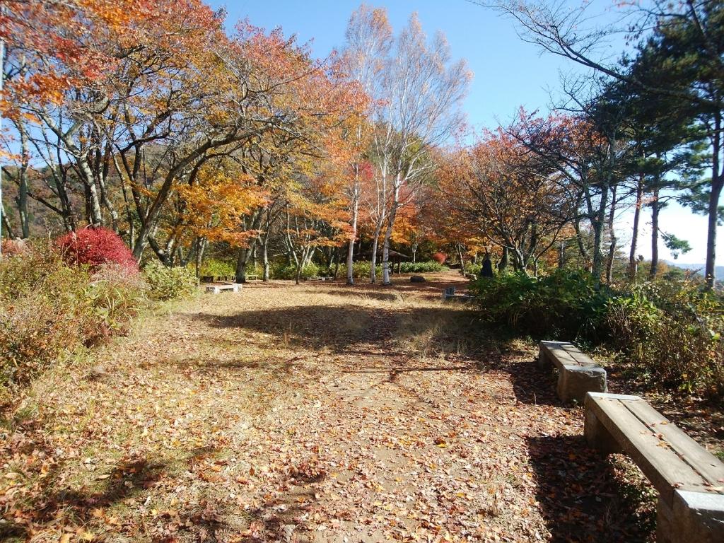 少し登ったところに広場がありベンチがある。すっかり秋景色ですな
