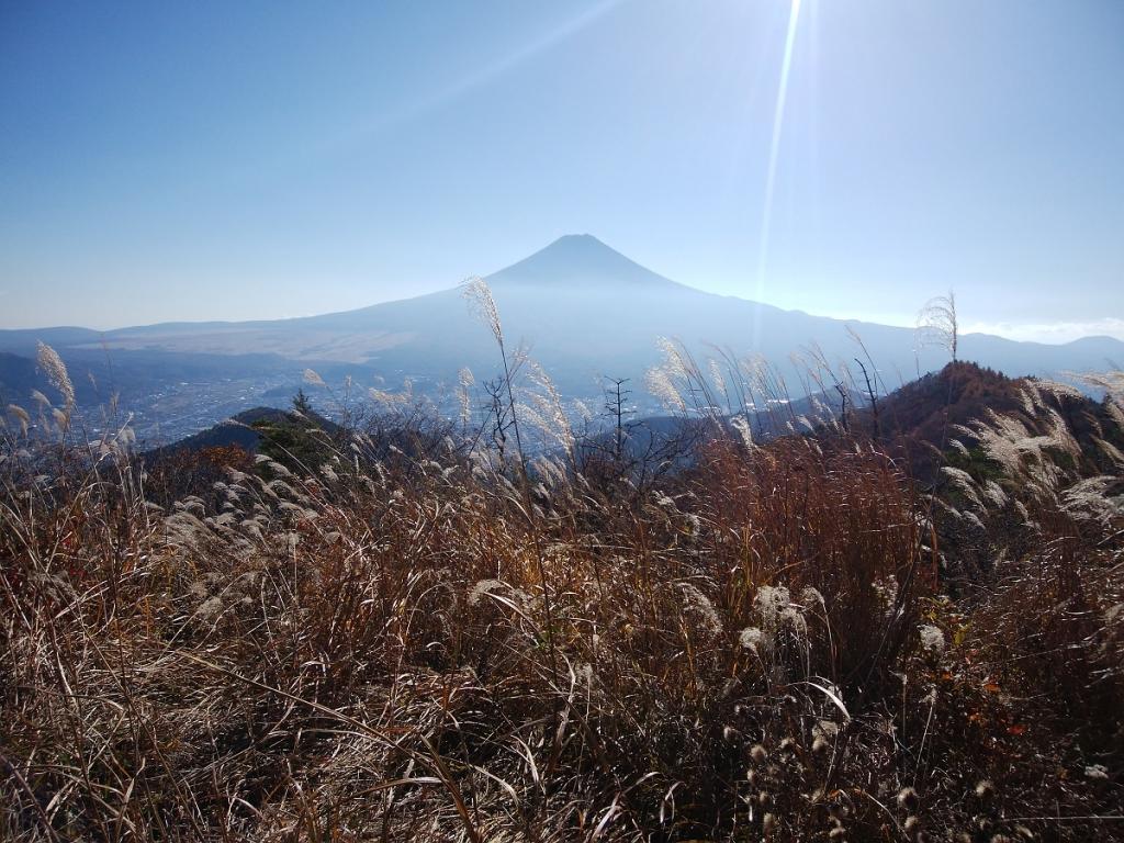 鉄塔からの富士山ビュー