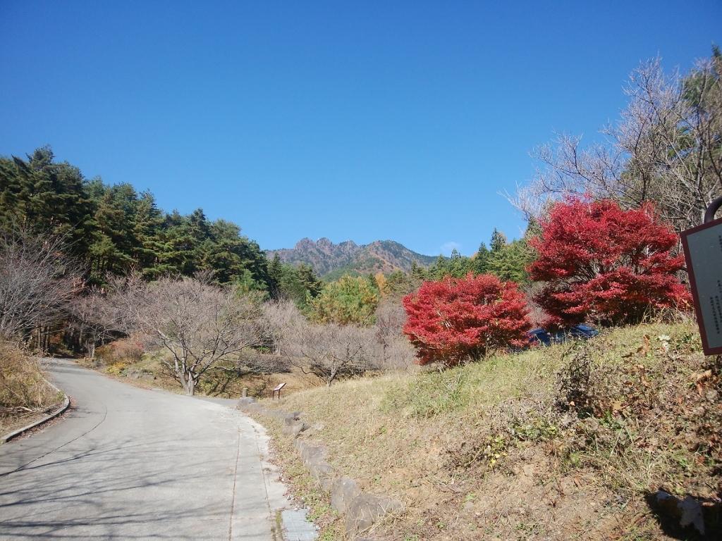林道から振り返ると三ツ峠山が見えた。さようなら~