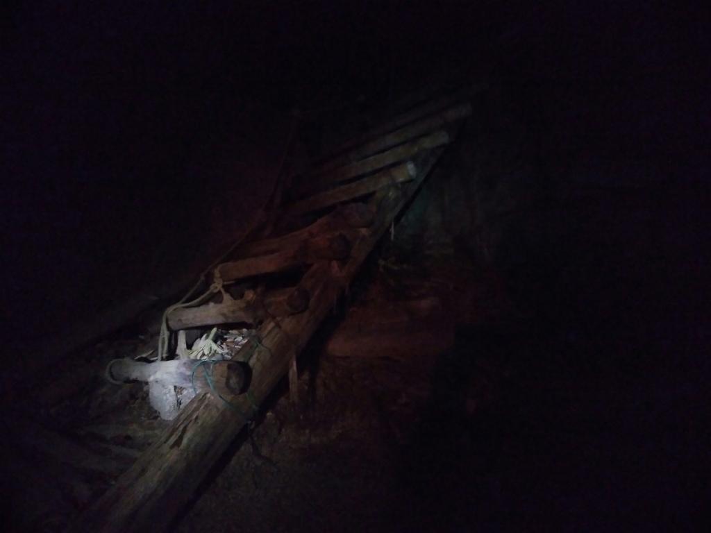 こういう木の階段はいつかボキッとなりそうで怖い