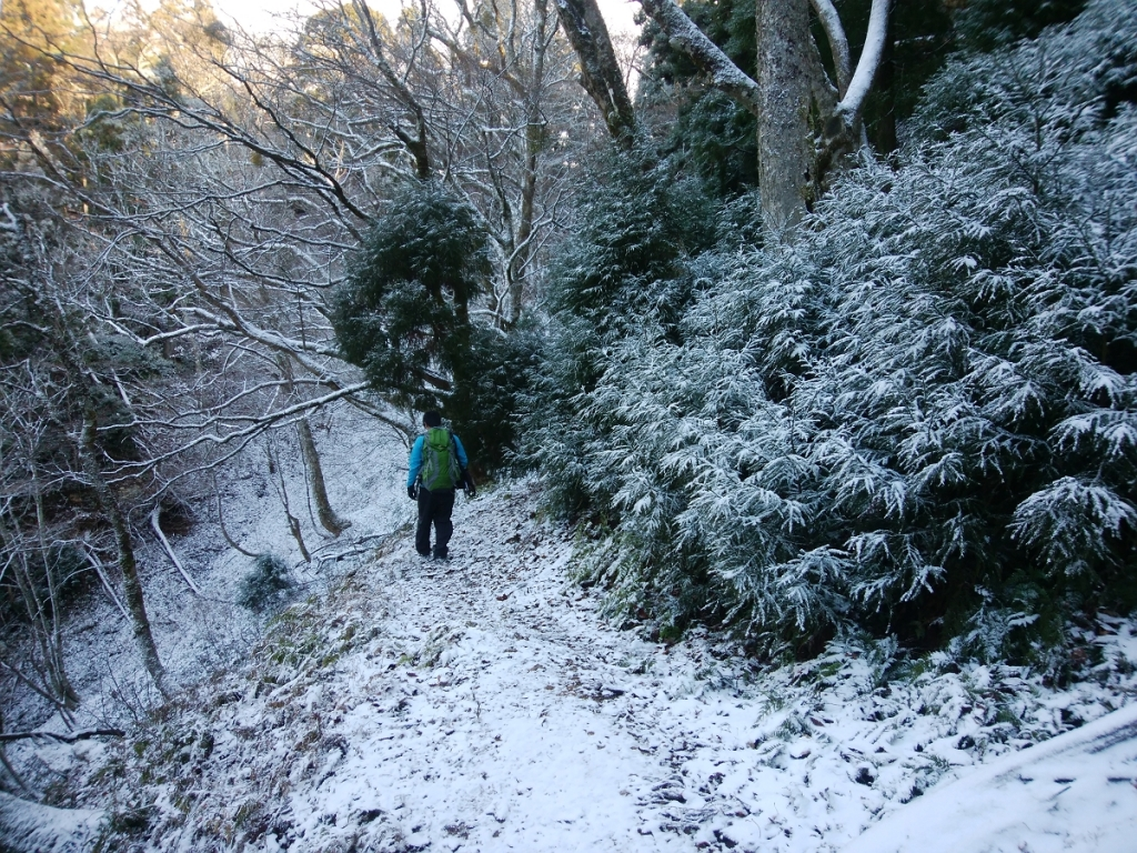 ちらっと積もった雪道をテクテクと歩いていく