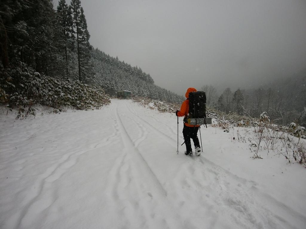 さて、これから長い林道を歩いていく