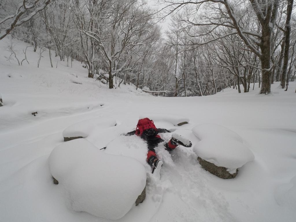 ここでも雪にダイブ~
