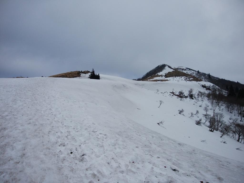 あともう少し!ここからちょっとした急登を登ると武奈ヶ岳はそこ!