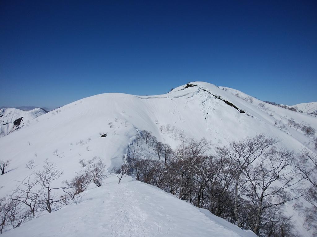 大日ヶ岳のピークが見えた