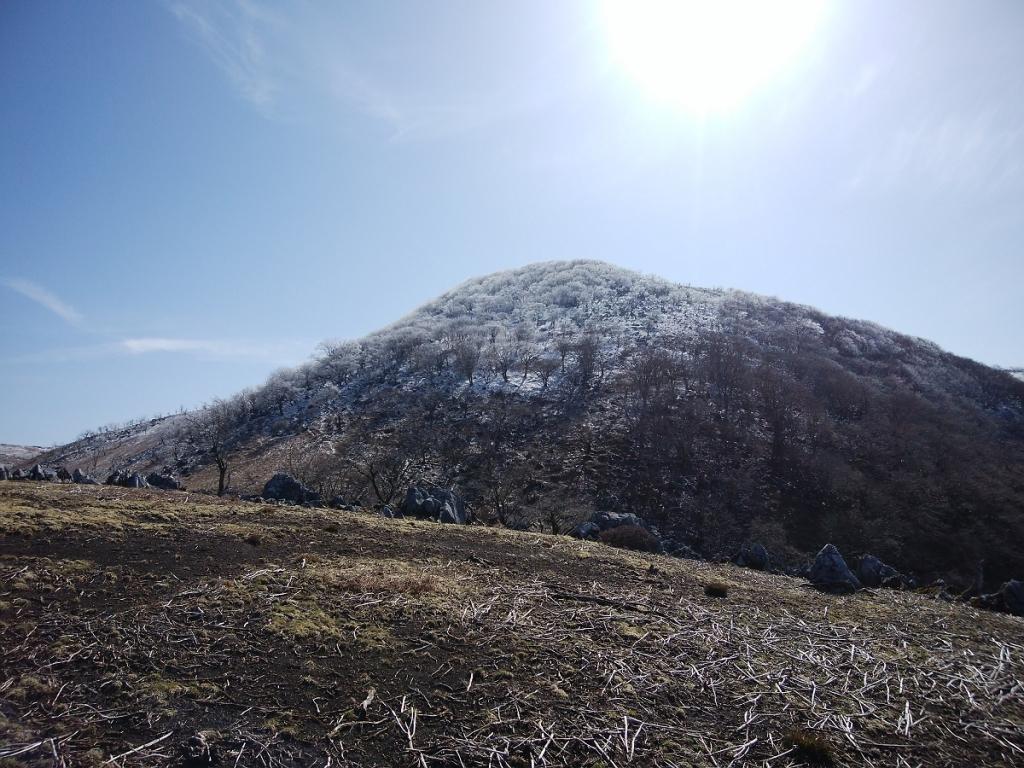 頂上付近は霧氷があった。これはラッキーだ