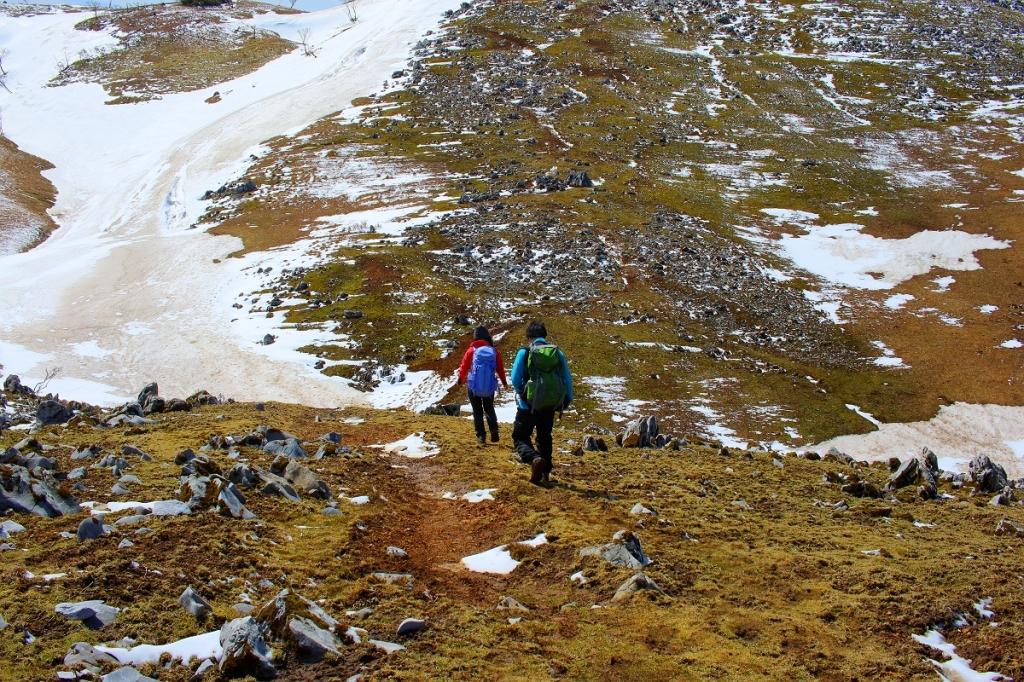 ピーク目指して歩くこの風景がなかなかグッド。とても1000m級の山とは思えないです
