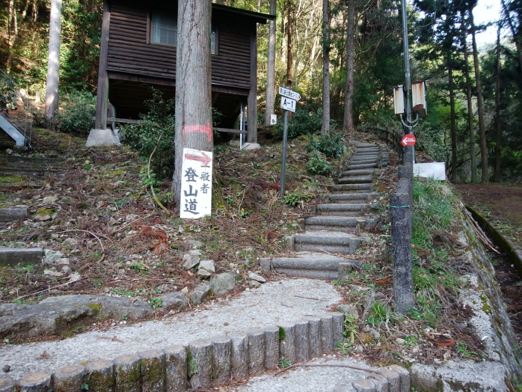 ここの階段を登っていく