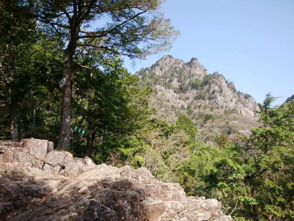 ここで山容が見えた。岩だらけなのでテンションが結構あがっていた