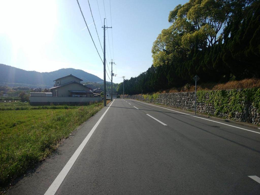加島神社まではひたすら道路歩き
