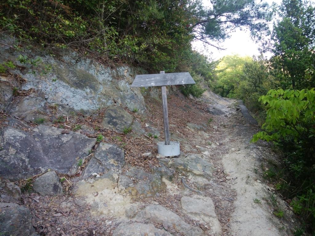 展望台?展望岩?とにかく、ここを左へ登る