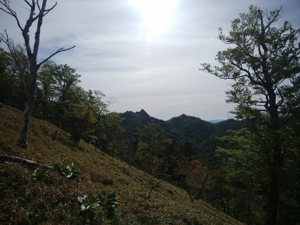 尖った大日岳が見えた