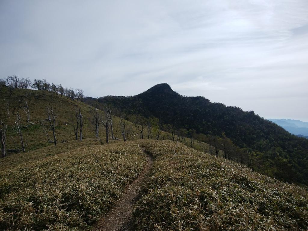 これから向かう釈迦ヶ岳が見えた