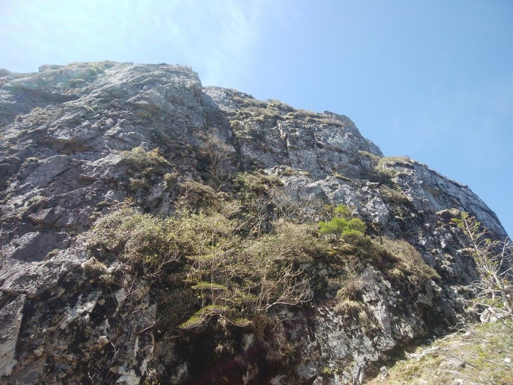 写真ではわかりにくいけど、迫力ある岩