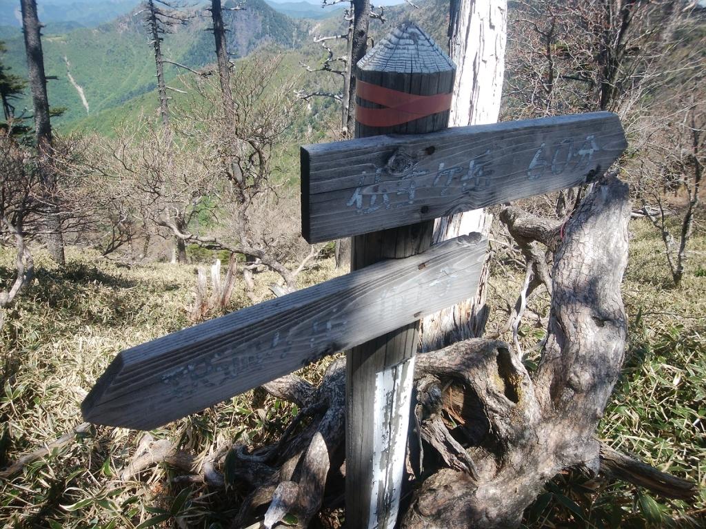 ここから釈迦ヶ岳まで110分!?仏生ヶ岳までは60分。仏生ヶ岳までのコースタイム的には全然余裕だね
