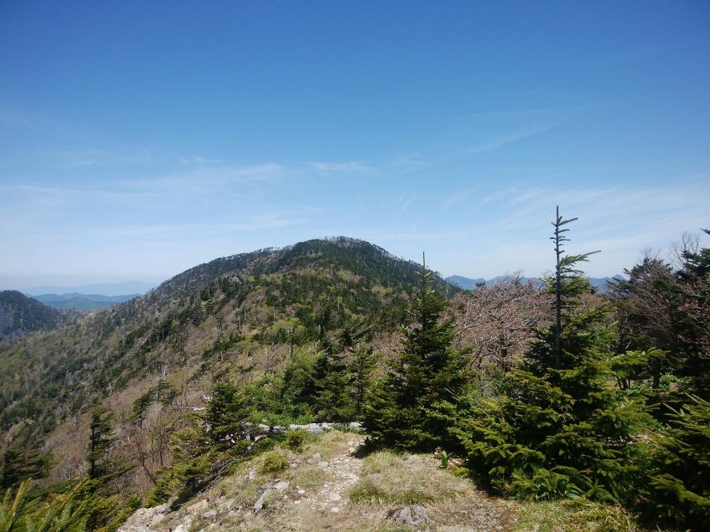 これから目指す仏生ヶ岳。ここから見ると結構遠いな