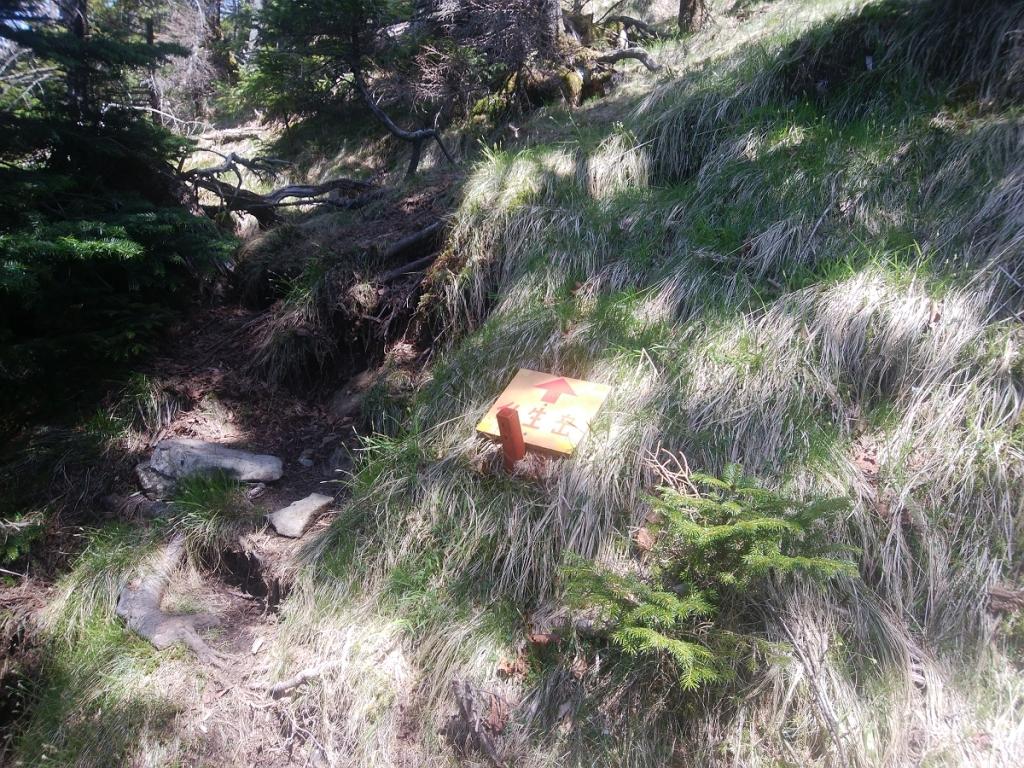 ここで奥駆道から離れて仏生ヶ岳の山頂を目指す