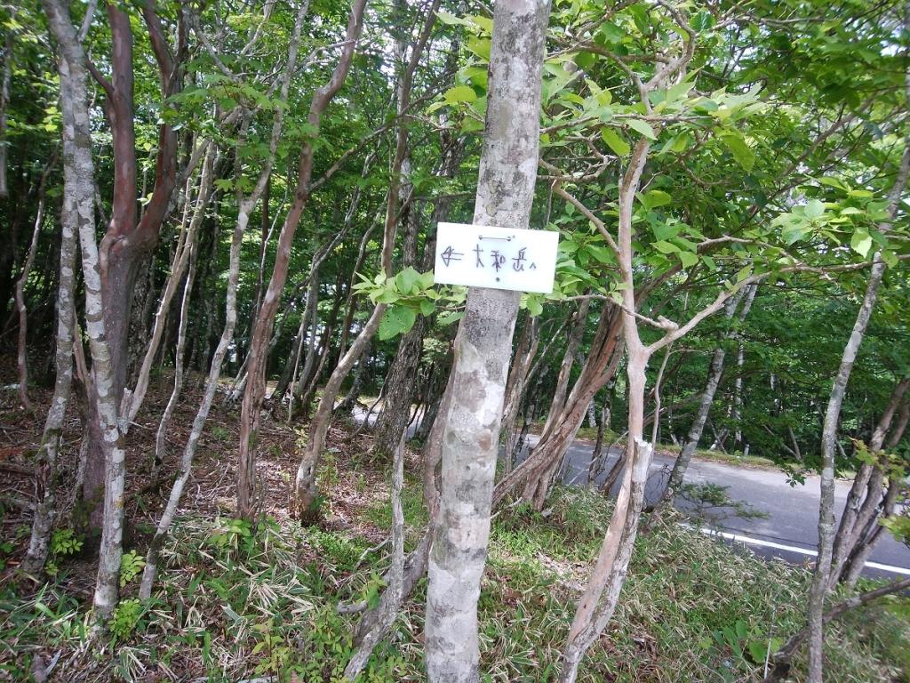 大和岳へのプレートがあった