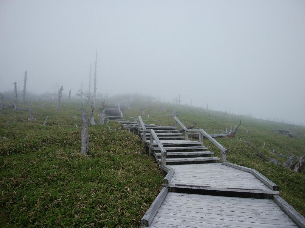 正木嶺。ここがガスってる風景は初めてみたけど、なかなか幻想的だった。これはこれでグッド!