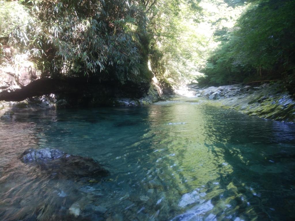 写真ではわかりにくいけど、素晴らしく透き通った水。ここを泳いでいく