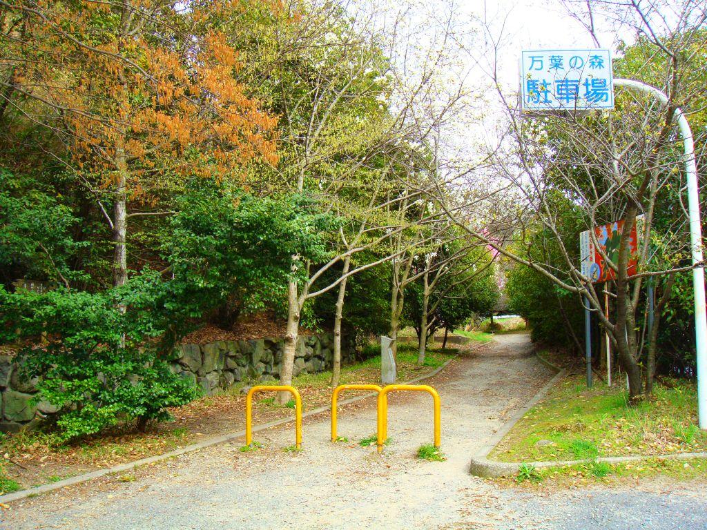 二上山(桜景色)1