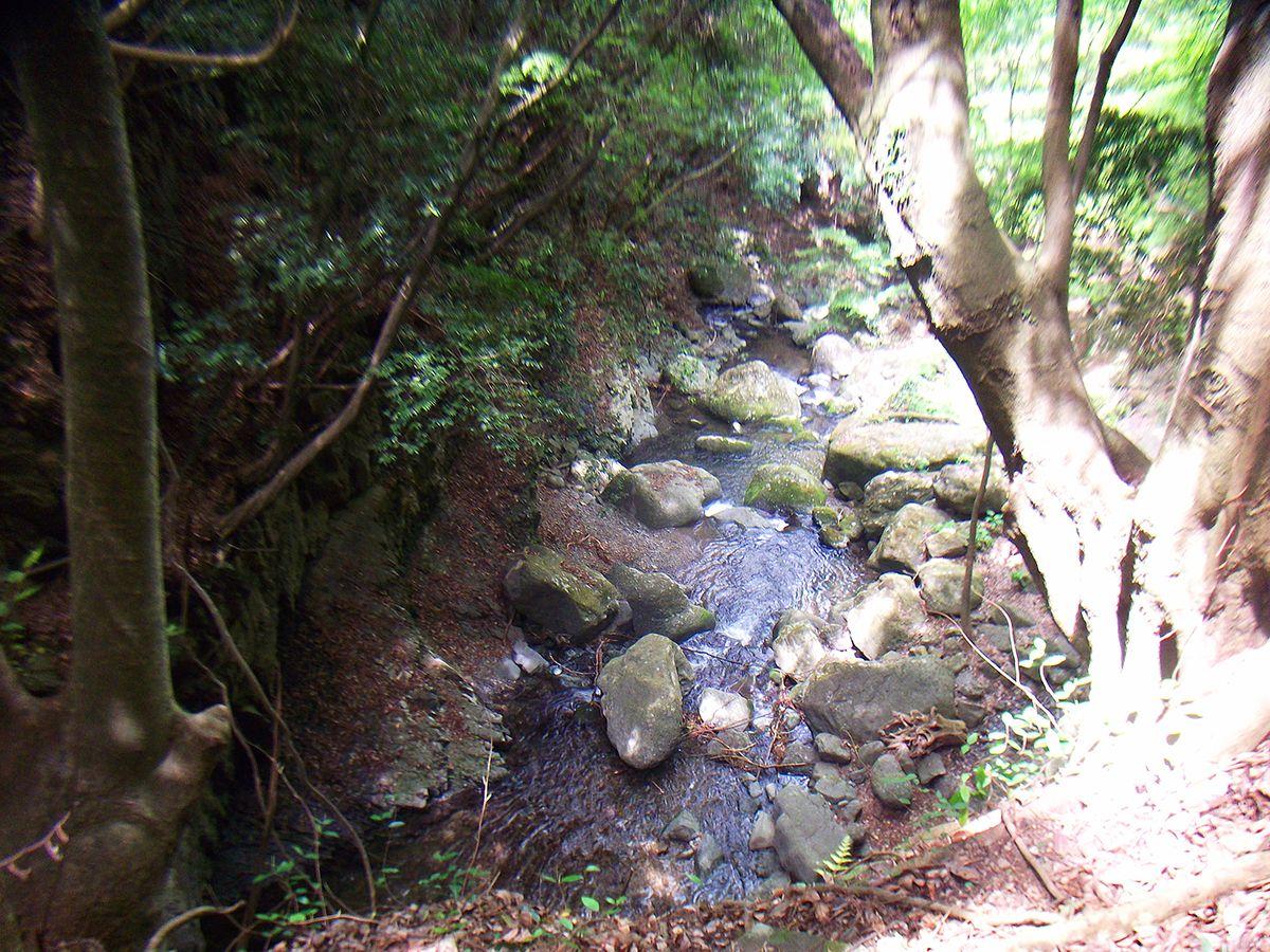 大石ヶ峰2