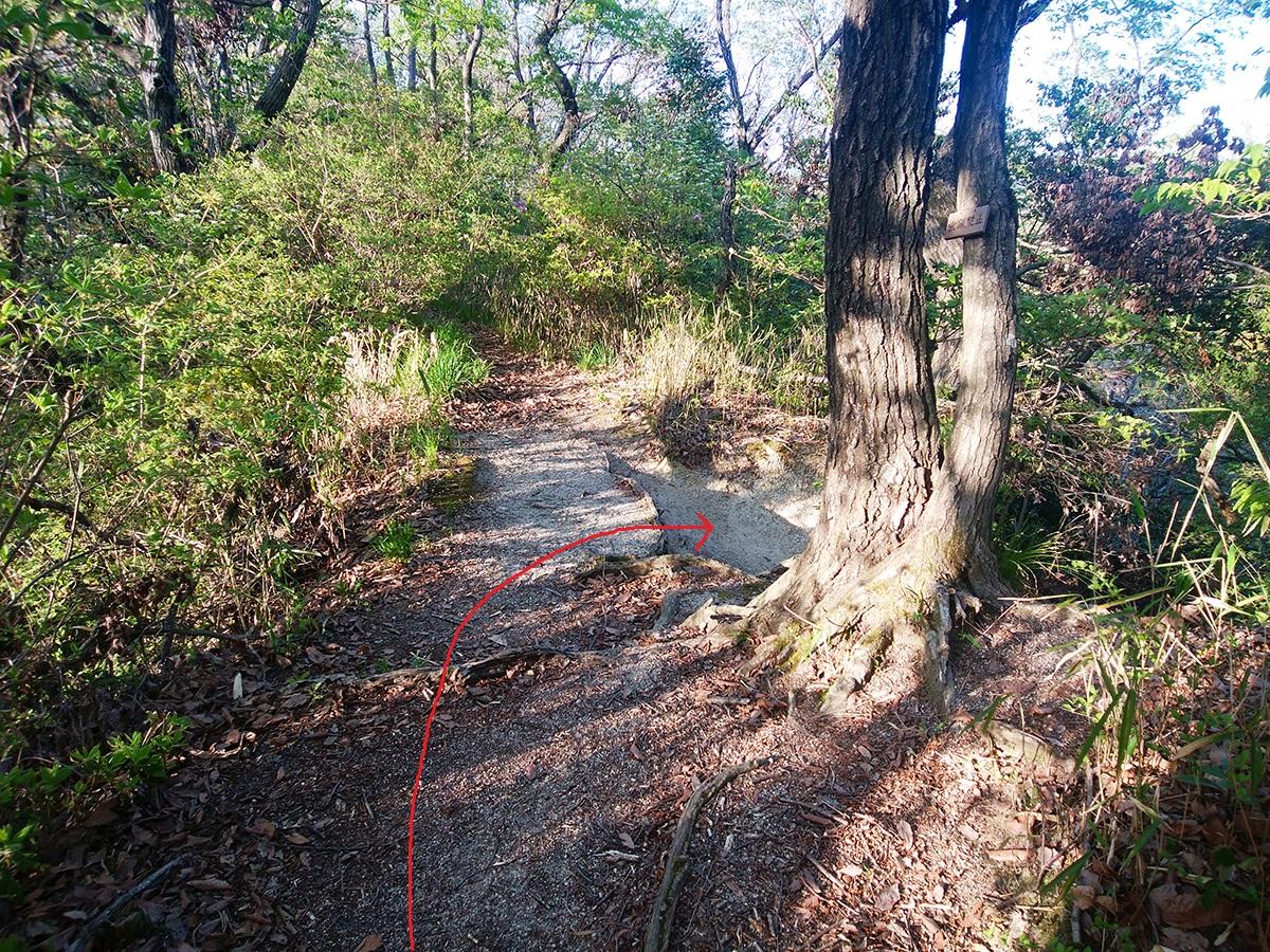 一蓋被の嶺ルート3