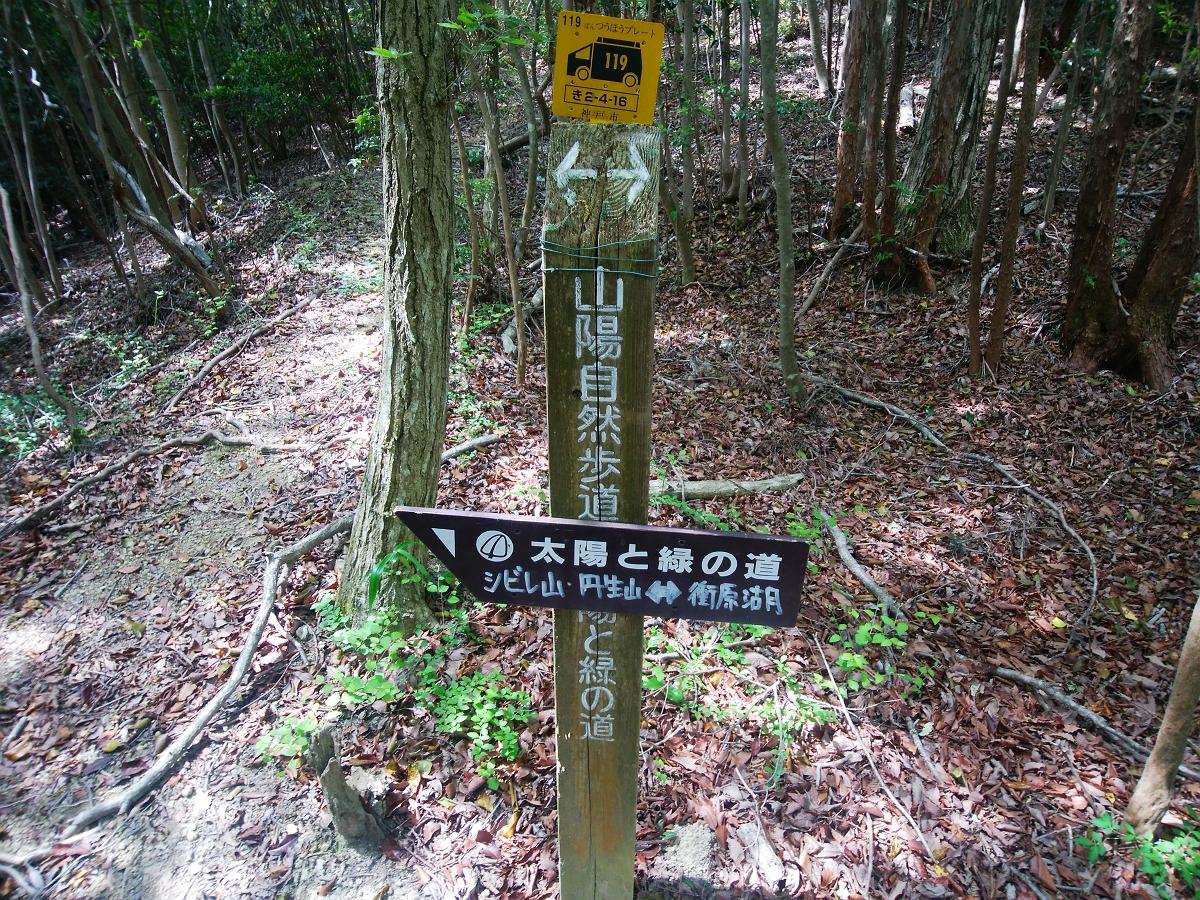 帝釈山17
