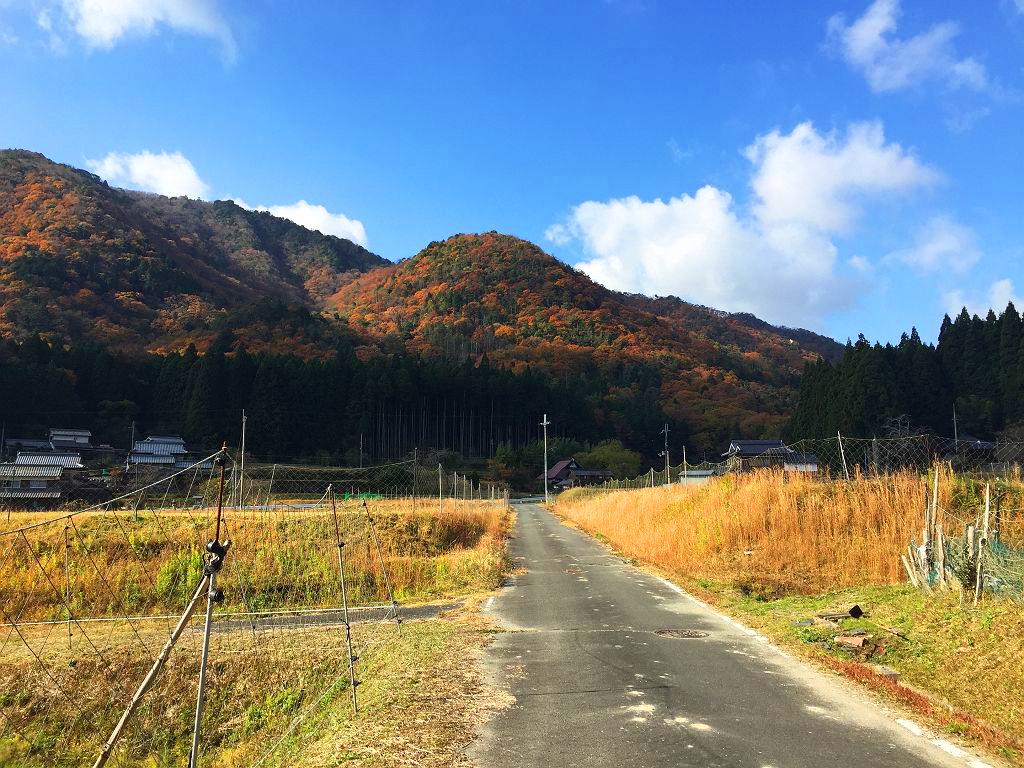 トンガリ山~白髪岳3