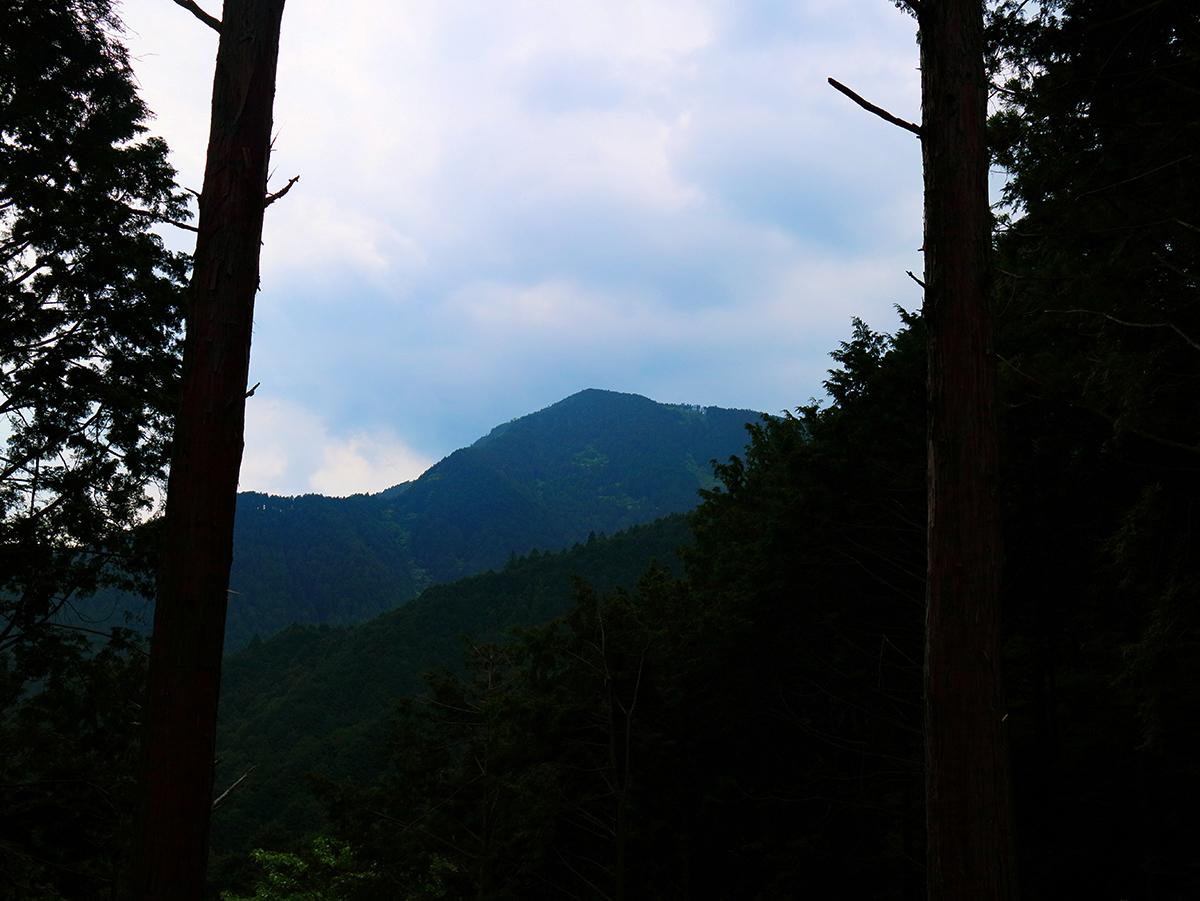 局ヶ岳15