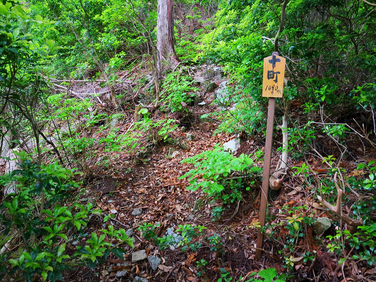 局ヶ岳19